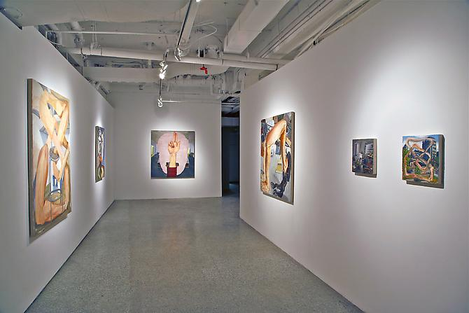 COLIN MUIR DORWARD |INSTALLATION VIEW | SAW GALLERY | OTTAWA CANADA | MARCH 2013