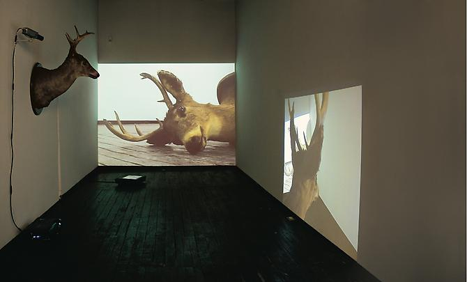 Dissonance  (installation view), 2009  Multiple channel video installation   View More  ➤