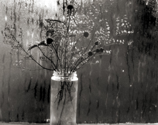Window and Still Life, Cape Cod, Massachusetts 1958 gelatin silver print