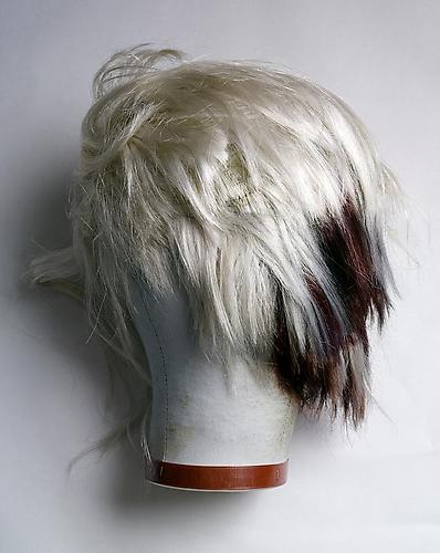 Todd Eberle Andy Warhol's Wig, from the Time Capsule date July 1987, The Andy Warhol Museum, Pittsburgh, PA, 2012. Edition of 6. Digital Ink Jet Print, 45 x 30 inches.