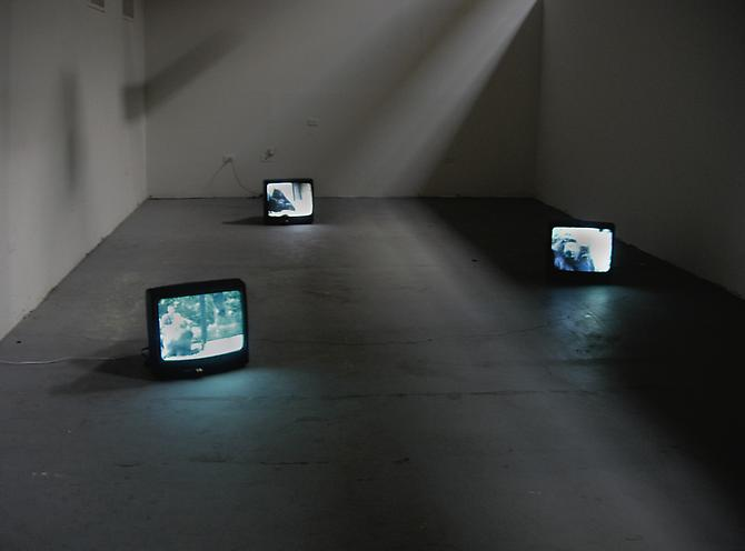 Primate Visions  (installation view), 2005 Multiple channel video installation Dumbo Arts Festival, New York   View More  ➤