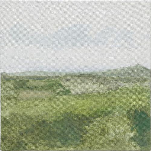 From Kelly's Trees , 2009 Oil on linen 12 x 12 inches