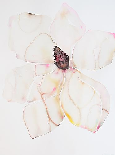 Kim McCarty, Untitled (Magnolia Wide Leaf No Stem) (2013) Watercolor On Paper 30h x 22w in (76.2h x 55.88w cm)