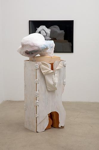 JILL SPECTOR  Partner, Platform, Perfect, Posture , 2004 Carved wood, plaster, cheesecloth, chicken wire, fabric, zipper, D-rings, dye,  paint, LightJet print, frame; Dimensions variable