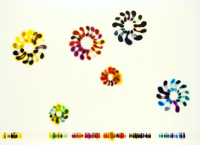 Jaq Chartier, Color Wheels (2010) Acrylic, Stains, Paint On Panel  32h x 44w in (81.28h x 111.76w cm)