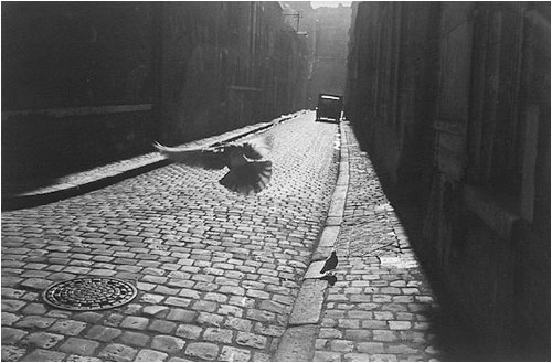 Orleans, France