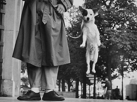 Paris, France [jumping dog] 1989