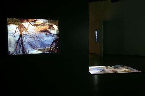 CHERYL PAGUREK | FLOW AND REFLECTION | INSTALLATION VIEW | LA MAISON DE LA CULTURE DU PLATEAU MONT-ROYAL | 2009   FEATURED EXHIBITION | THE SPACES OF THE IMAGE | LE MOIS DE LA PHOTO A MONTREAL | SEPTEMBER 10 TO OCTOBER 11, 2009