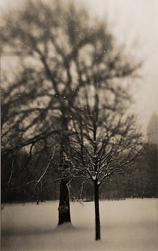 Central Park No. 3, New York artist proof 2001 gelatin silver print