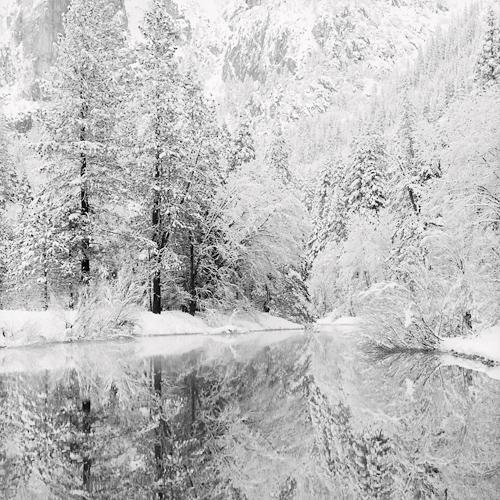 Snow Covered Reflections 2005 gelatin silver print