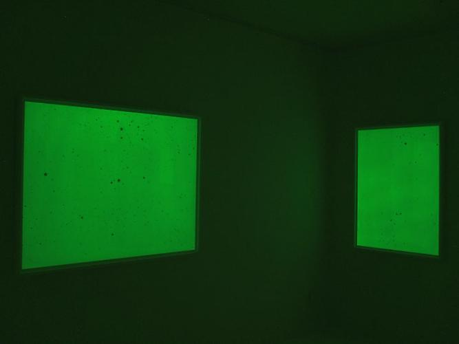 Mungo Thomson Dark Matter, 2010 Installation view Gavlak, Palm Beach