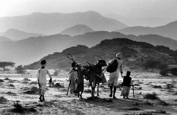 Red Sea Region, Sudan [Villagers in exodus between Tokar and Karora walk in the hope of reaching a refugee camp] 1985 gelatin silver print