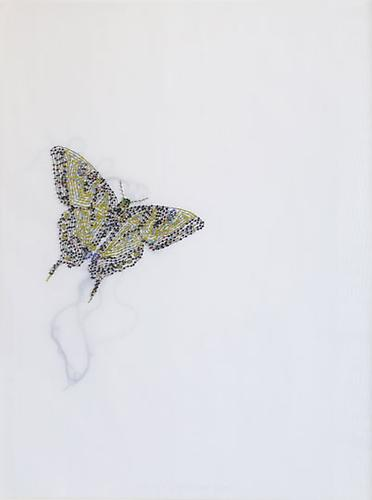 Butterfly, 2009 Glass beads and thread on vellum 21 x 27 inches
