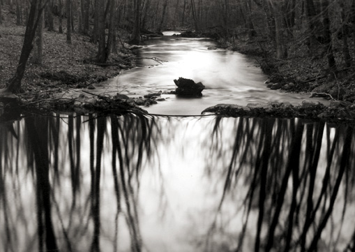 Reflecting Stream, Redding, CT 1968 gelatin silver print