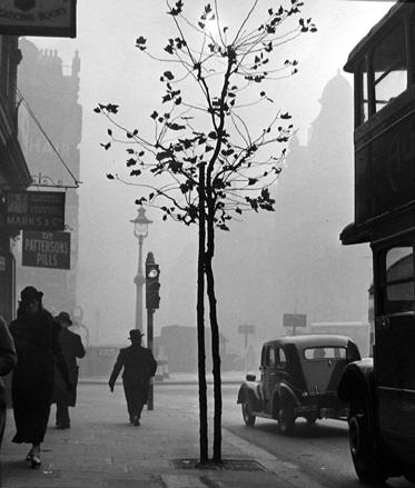 View from 84 Charing Cross Road towards Cambridge Circus [stop light] 1936 gelatin silver print