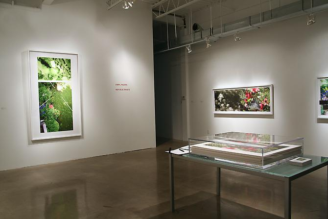 CHERYL PAGUREK | HIGH VALUE TARGETS | INSTALLATION VIEW | PATRICK MIKHAIL GALLERY | 2010
