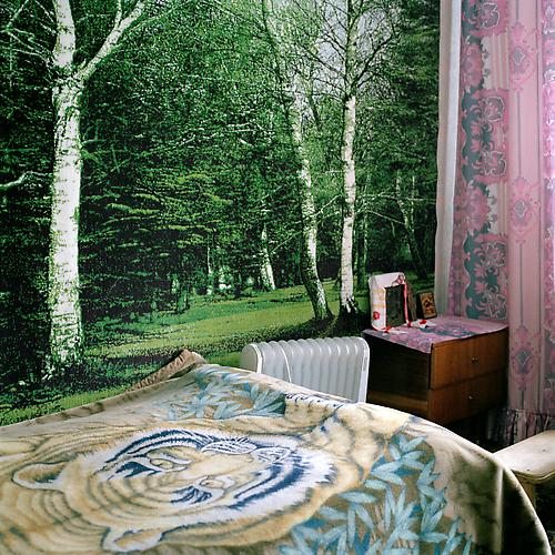 OLGA CHAGAOUTDINOVA | TIGER AND A FOREST IN THE BEDROOM | C-PRINT | 61 x 61 CENTIMETERS | 2006