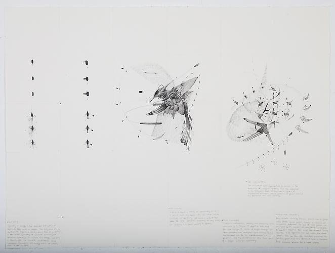 Fractal to Flock , 2012 Graphite on paper 22 x 30 inches