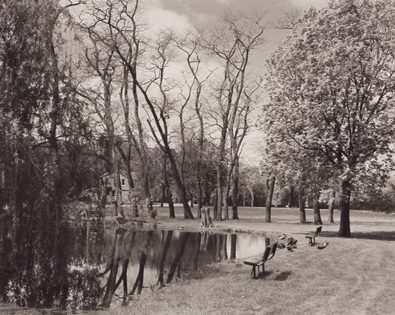 Pond, Trees, & Ducks, Villa Louis, Prairie Du Chein, Wisconsin 2002 Platinum Palladium