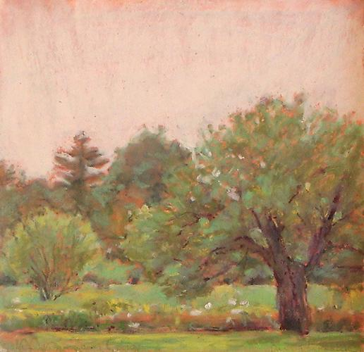 Apple Orchard, 2010 Oil Pastel on Arches paper 10 x 10 inches