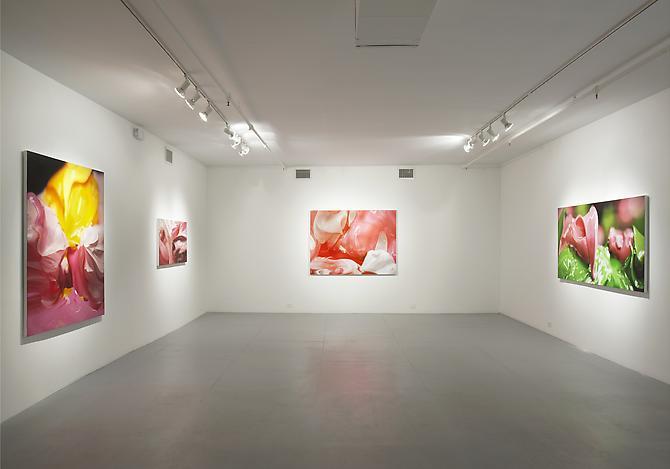 Ben Weiner SMUSH Exhibtion
