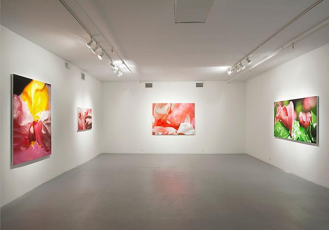 Ben Weiner SMUSH Exhibition