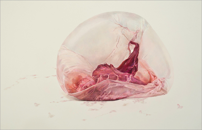 Blush Pink, 2012 Colored Pencil On Paper 26 x 40 inches