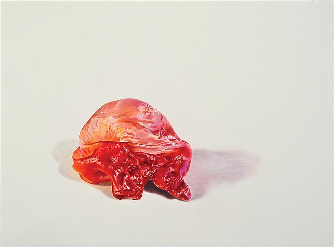Burnt Orange, 2012 Colored pencil on paper 22 x 30 inches