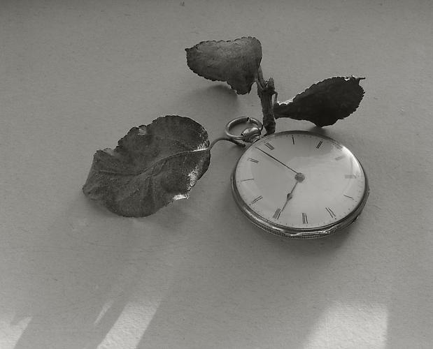 Clock with Leaves 1983 gelatin silver print