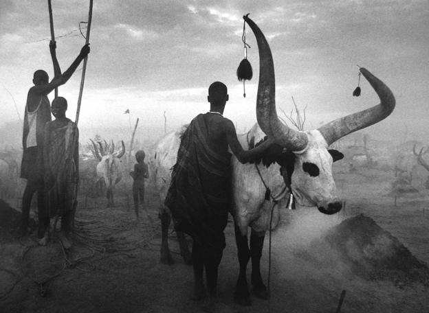 Dinka Group at Pagarau Cattle Camp, Southern Sudan 2006 gelatin silver print