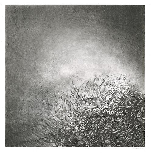 Fuyu #2, 2012 Graphite on bristol 13 x 13 inches