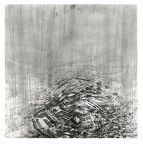 Fuyu #4, 2012 Graphite on bristol 13 x 13 inches