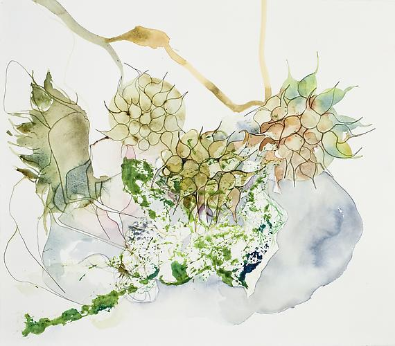 Emilie Clark, Untitled (EHR 31) from Sweet Corruptions (2011) Watercolor On Paper 15.5h x 16.5w in