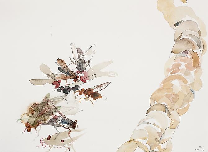 Emilie Clark, Untitled (EHR 41) from Sweet Corruptions (2012) Watercolor, Graphite  On Paper 15h x 22w in