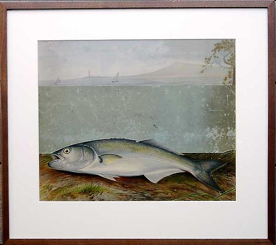 "Varujan Boghosian, 2006  The Fish for Elizabeth Bishop , collage 25"" x 21.5"""