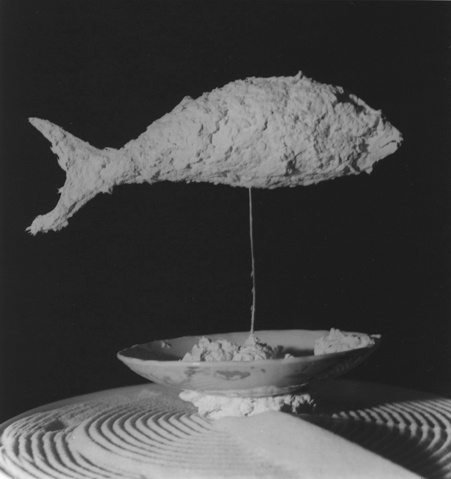  Fish , 2011