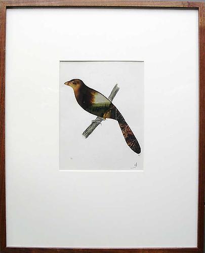 "Varujan Boghosian, 2006  For Audubon , collage 8.75"" x 7.75"""