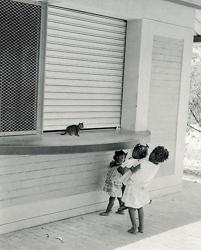 Untitled (Three Girls & Kitten) 2005 Gelatin Silver Print