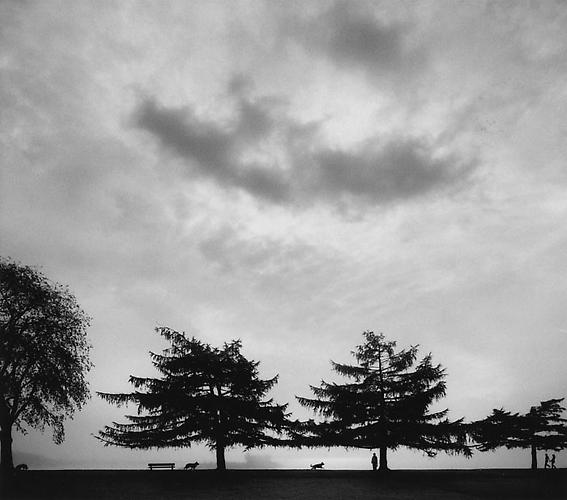 Helsinki, Finland (Four Trees & Figures on Horizon) 2005 Gelatin Silver Print