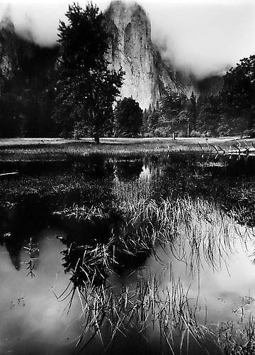 Pond, Meadow, Cathedral Rocks, Yosemite 1962 gelatin silver print