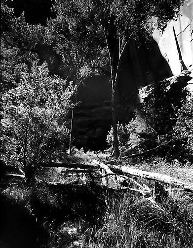 Pot Canyon, Tributary to Escalante River, Glen Canyon, Utah 1964 gelatin silver print