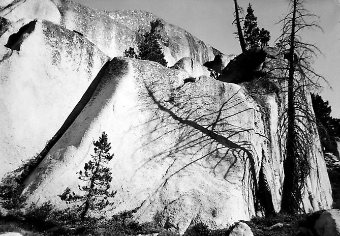 Snag and Shadow On Granite Wall, Northern Yosemite 1950 gelatin silver print