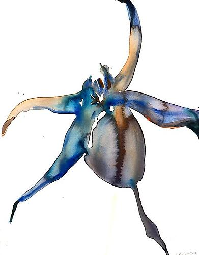 Blue Rose Hip (2012) Watercolor On Paper 22h x 15w in (55.88h x 38.1w cm)
