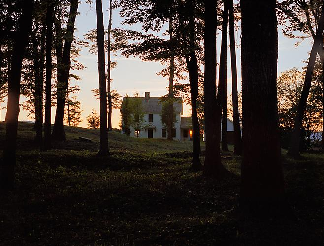 Forest House, 2011 from 'Know Me For the First Time' pigment print