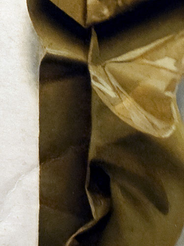 Brown Tape (detail) , 2011, oil on cardboard, 12 x 24.5 inches