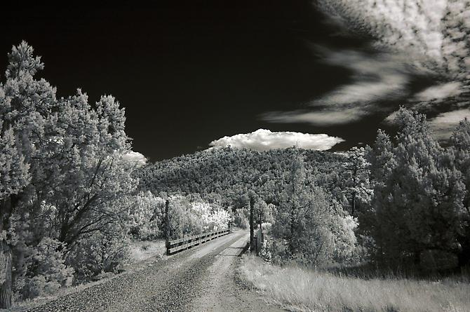 Untitled, 2009 | archival pigment print | 16 x 20 inches | Edition of 10