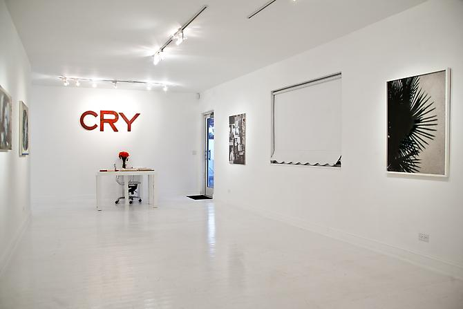"Installation view ""The Palm Beach Beach Story, or Whatever Happened to Baby Jane"", 2012 Gavlak Gallery"