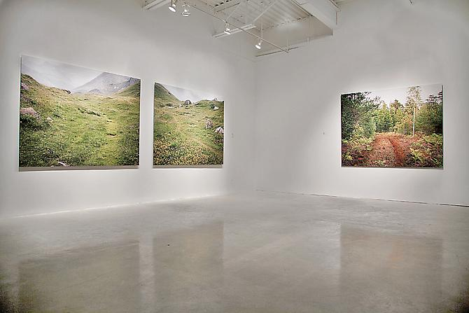 JESSICA AUER | MEADOW | PATRICK MIKHAIL GALLERY | INSTALLATION VIEW