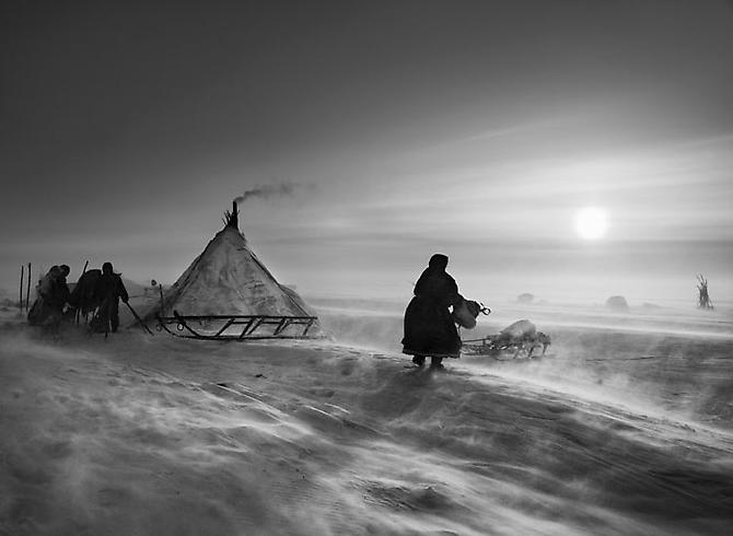 Nenets Nomads (windstorm at camp), North of the Ob River, Siberia, Russia 2011 Gelatin silver print