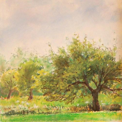 Orchard, Grey Day, 2010 Oil Pastels on Arches paper 10 x 10 inches